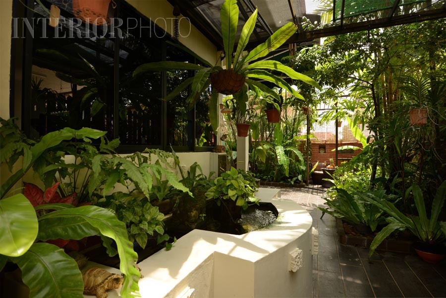 Landscaping And Outdoor Space Design Interiorphoto